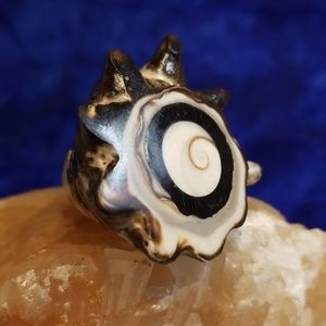 Jewelry - Conch shell ring purchased in Amalfi Coast Italy